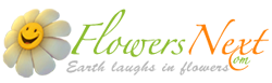 flowersnext-logo